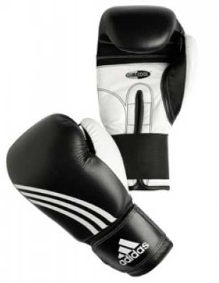 adidasperformer_boxing_gloves