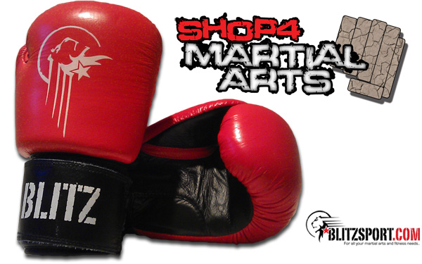 blitz sport leather boxing gloves