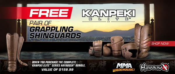 hayabusa-free-grappling-shin-guards