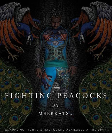 meerkatsu-peacock
