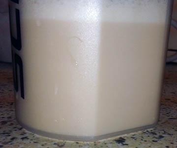 myprotein-impact-whey-protein-salted-caramel-shake