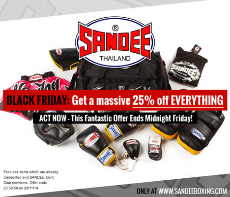sandee-black-friday-2014